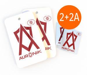 Ауроник Про + Ауроник Смарт 2+2А